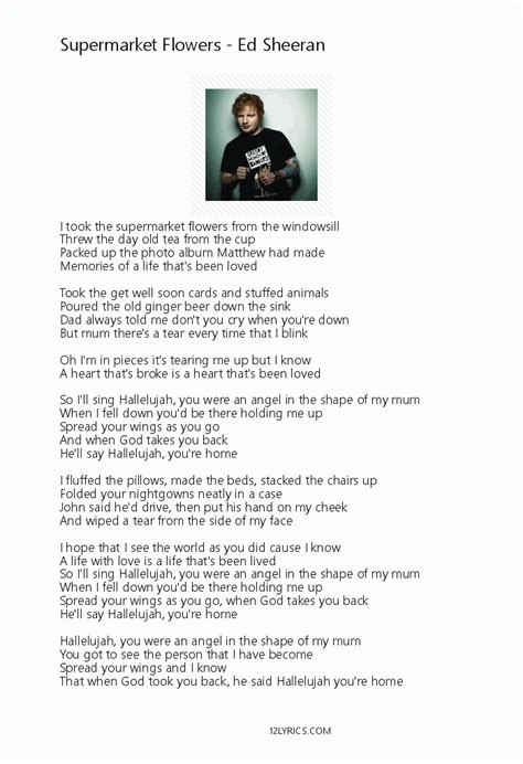 Ed Sheeran Supermarket Flowers Lyrics | ed sheeran supermarket flowers lyrics pdf 12lyrics