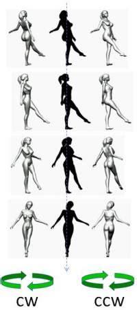 ilusiones opticas hacia donde gira la bailarina mitos y timos 191 hacia que lado gira la bailarina
