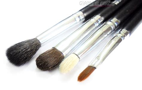 bh cosmetics eye essential to go 4 brush set review glam up