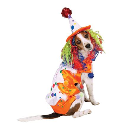 clown costume for dogs clown costume by zack zoey baxterboo