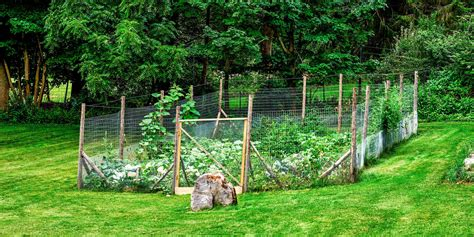 build vegetable garden fence great garden fence ideas for 2017 how to build a garden