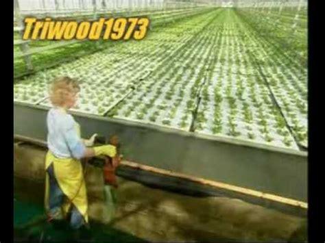 Jual Polybag Denpasar bercocok tanam dg hidroponik tanamanbaru