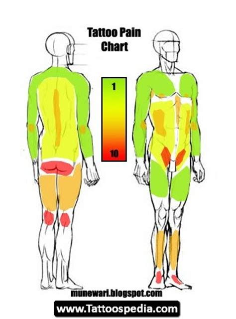 tattoo pain diagram chart 12
