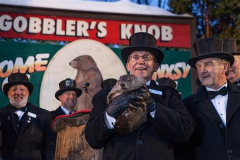 groundhog day celebration punxsutawney phil sees shadow more winter to come the