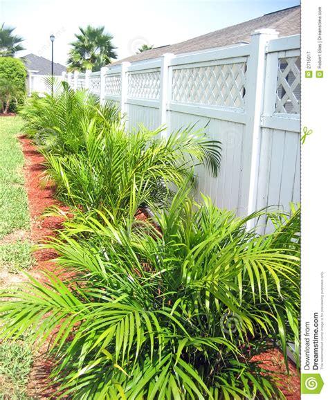 White Backyard Fence - green plants along white fence stock image image 2715017