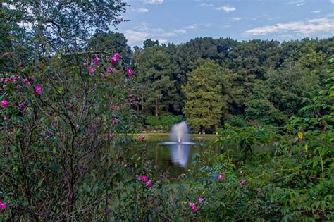 Edisto Gardens by Edisto Memorial Gardens Orangeburg South Carolina Sc