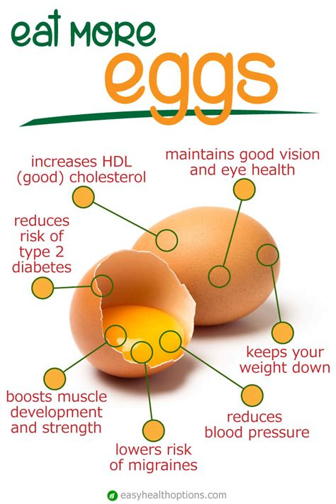 the health benefits of organic eggs the health benefits of eggs easy health options 174