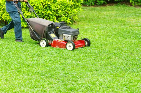 Landscaper Lawn Mower Save Time And Your Grass With Lawn Mowing Services In