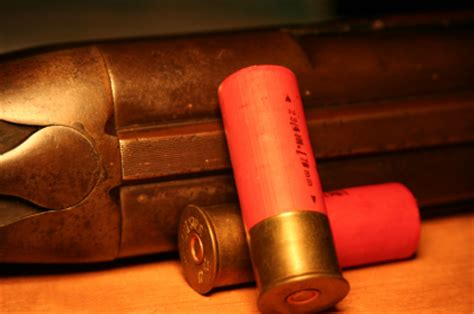 3 reasons why a shotgun should be your choice for home