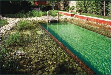 diy backyard pool diy swimming pool ideas backyard design ideas