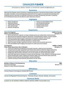 resume exle professional design