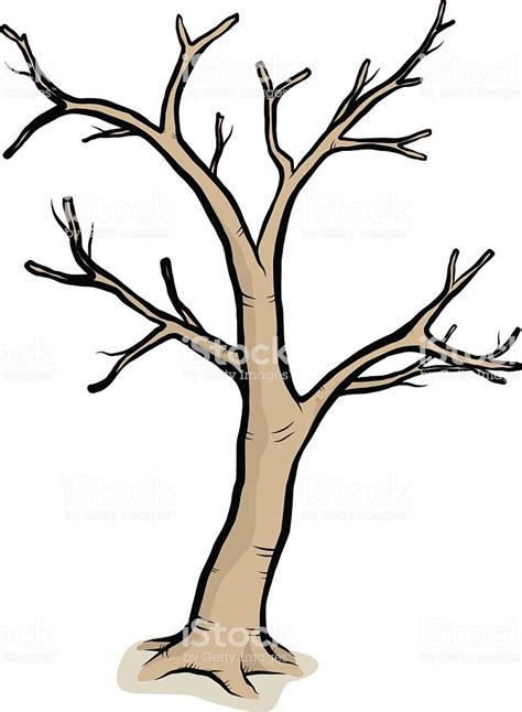 A Drawing Of A Tree With Bare Branches Stock Vector