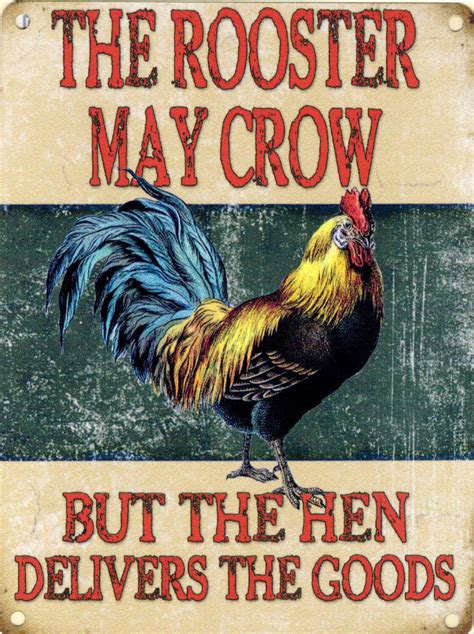 new 30x40cm rooster may crow hen vintage enamel style tin