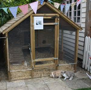 rabbit lives in a hutch rabbit hutches and how to choose which bedding celia