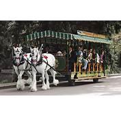 Stanley Park Horse Drawn Tours Vancouver BC