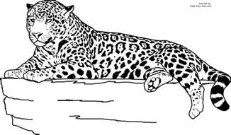 Jaguar Colour Free Coloring Pages Of Jaguars