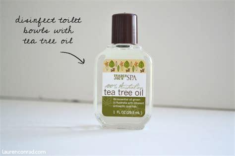 tea tree oil bathroom cleaner tuesday ten diy green cleaning lauren conrad