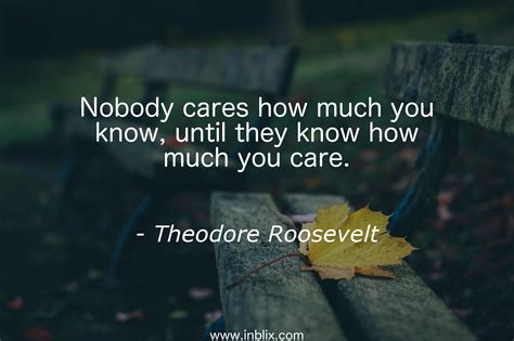How To Tell How Much Is On A Gift Card - nobody cares how much you know by theodore roosevelt inblix