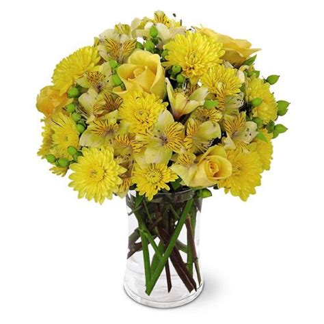 Send Flowers Cheap by Send Flowers Chicago Cheap Flower Inspiration