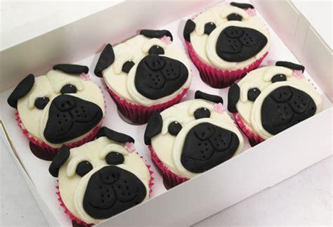pug birthday cakes happy pug cupcakes cakey goodness