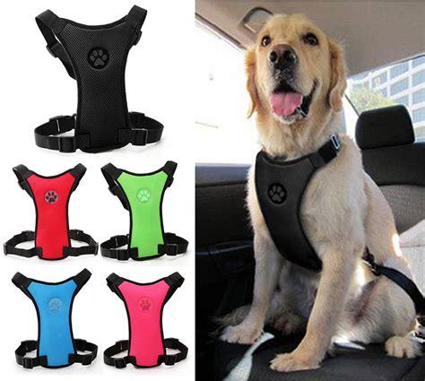 seat belt petsmart petsmart seat belt harness petsmart get free image