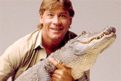 Steve Search Steve Irwin Aol Image Search Results