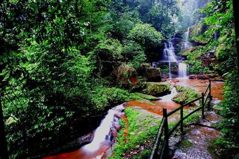 imagenes bellas naturales r 237 o de agua viva formando hermosas cascadas naturales en