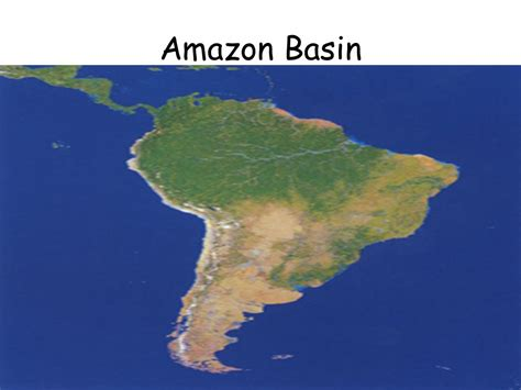 amazon basin objective tsw describe the biodiversity of the amazon