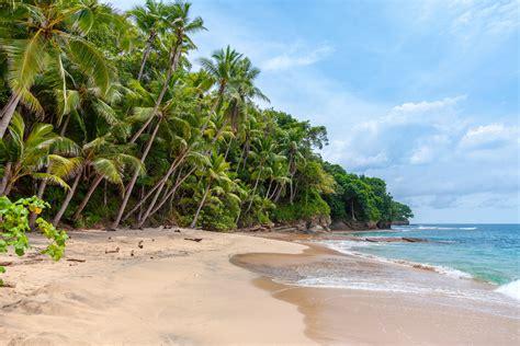 picallscom paradise beach  rowan heuvel