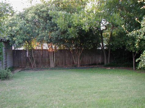 back yards the backyard