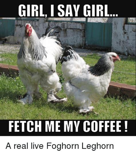 Foghorn Leghorn Meme - 25 best memes about foghorn leghorn foghorn leghorn memes
