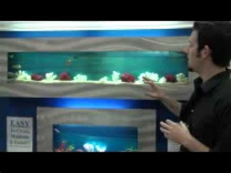 aquarium design youtube aquarium designs an introduction to living art aquariums