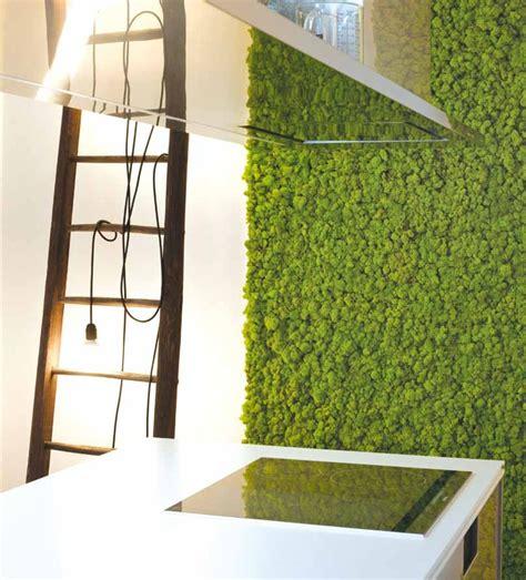 imagenes de jardines verticales pequeños 200 mejores im 225 genes sobre jardineria vertical