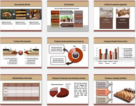 Powerpoint Professional Introduction Template Professional Powerpoint Slides
