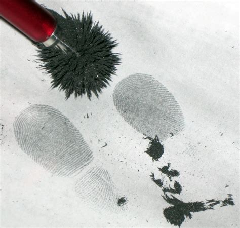 Beosound 6 A Looking Fingerprint Magnet by 48 Best Images About Fingerprint On
