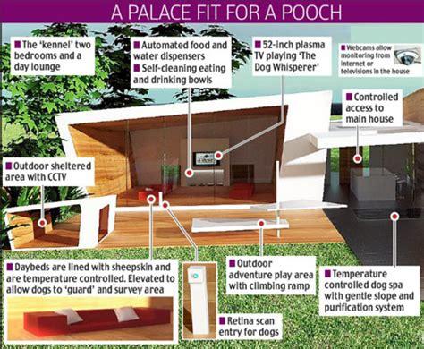 crazy dog houses incredible dog house design design swan