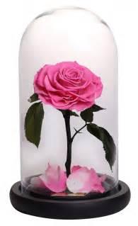roses that last forever forever rose brings eternal roses to dubai savoir flair