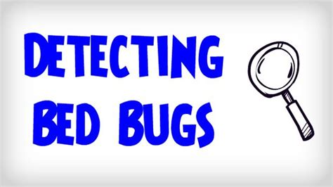 how to detect bed bugs ultimate guide on how to detect bed bugs detecting a bed bug infestation 全て