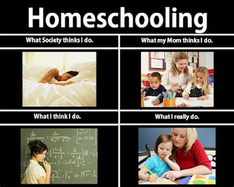Home School Meme - 5 reasons why so many moms are opting to homeschool their