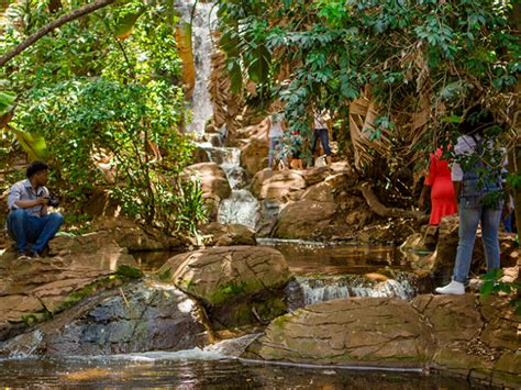 Botanical Gardens Pretoria Pretoria National Botanical Garden Things To Do In Pretoria Tshwane