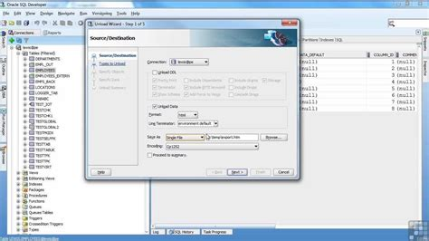 tutorial sql oracle pdf oracle 11g tutorial loading data via sql developer