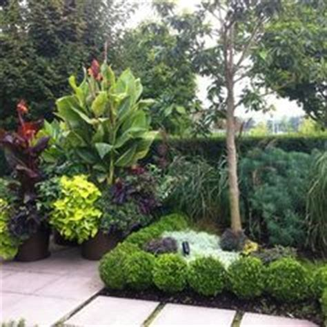 Landscaping Ideas Zone 8a Minimalist Small Tropical Garden Design Not Necessarily