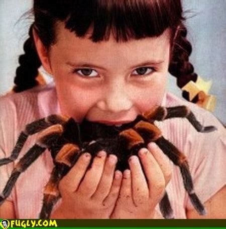spider eater gross pictures