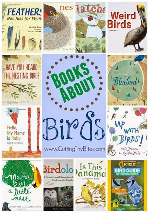 The 21 Best Images About Birds Preschool Crafts - bird theme weekly home preschool what can we do with