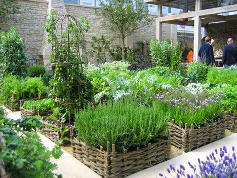 home herb garden herb gardening container gardening