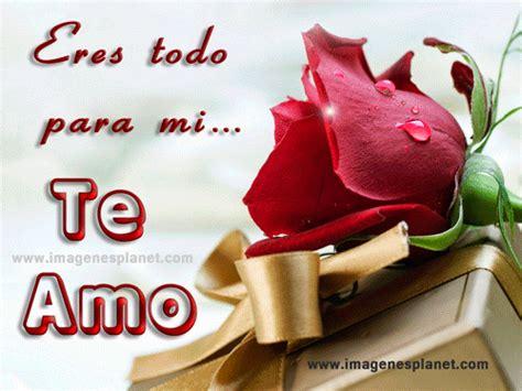 imágenes de buenos dias mi amor con rosas imagenes de rosas con frases romanticas de amor para