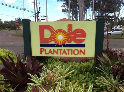 Review: Dole Plantation, Hawaii's Pineapple Experience   Points Miles & Martinis