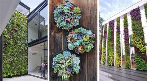 20 ideas to make a vertical wall garden