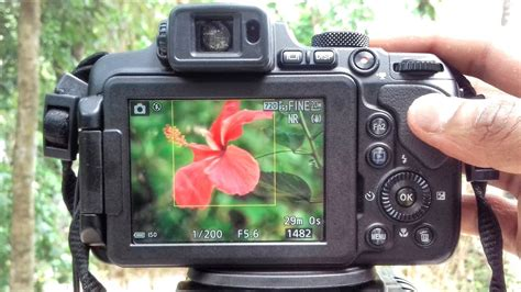 how to blur background nikon coolpix b700 p1000 p900 b500 manual mode tutorial 2018