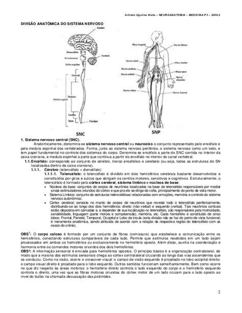 Neuroanatomia 01 introdução à neuroanatomia e